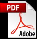 PDF herunterladen Icon